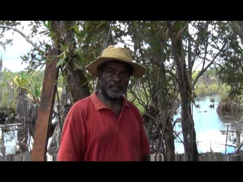 Dai Milk Fish Farming - Malaita Solomon Islands