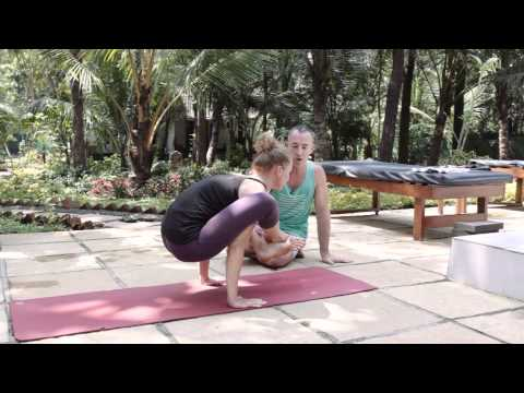 Ashtanga Yoga Asana School - Bhujapidasana