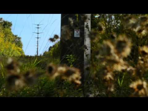 ATC Vegetation Management Program