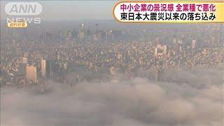 中小企業の景況感 全業種で悪化 東京商工会議所(19/12/11)