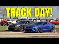 1/4 MILE RACING: Camaro SS 1LE vs SRT Dodge Charger vs Ford Mustangs