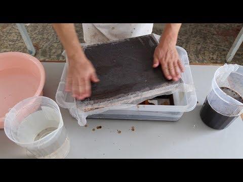 Making paper of sargassum seaweed