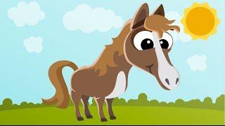 Пазлы про лошадей (Puzzles about horses)