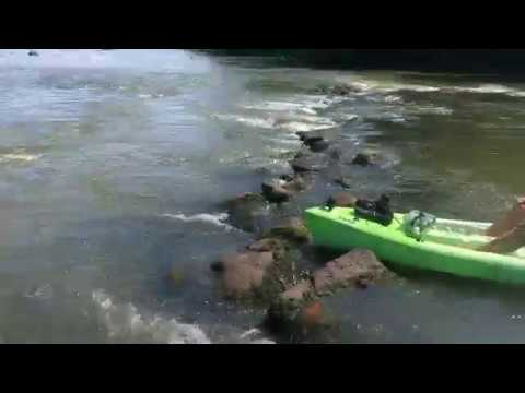 Native American Fishing Weir On The PeeDee