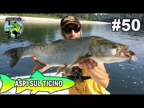Aspi Sul Ticino - Aspio a Spinning e Casting