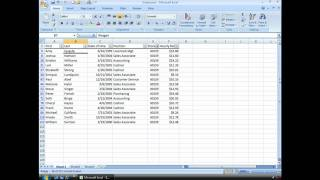Excel Tips and Tricks: AutoFilter
