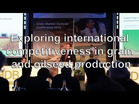 Exploring international competitiveness in grain and oilseed production