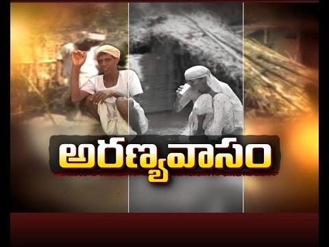 This Family Living in Forest at Adilabad District | A Story