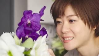 上野樹里CASIO SHEEN 春夏系列宣傳影片【日本廣告】上野樹里代言CASIO S...