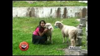 VILMA ROJAS - Album 1 - Amor de Cristo (SUNMI PRODUCCIONES) Nueva Imagen 2012