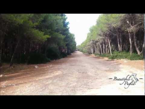 Porto Cesareo - Il Canto delle...