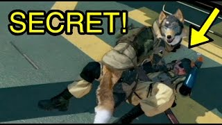 MGSV Phantom Pain - D-Dog Licking Secrets Metal Gear Solid 5