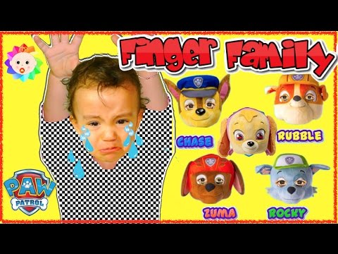 Thumbnail: Bad Baby crying and learn colors with Ryder Paw Patrol Chase Skye Superhero - Finger Family Song