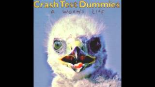 Crash Test Dummies - There Are Many Dangers