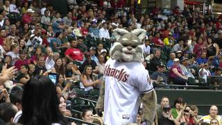 Baxter & the Arizona Diamondbacks