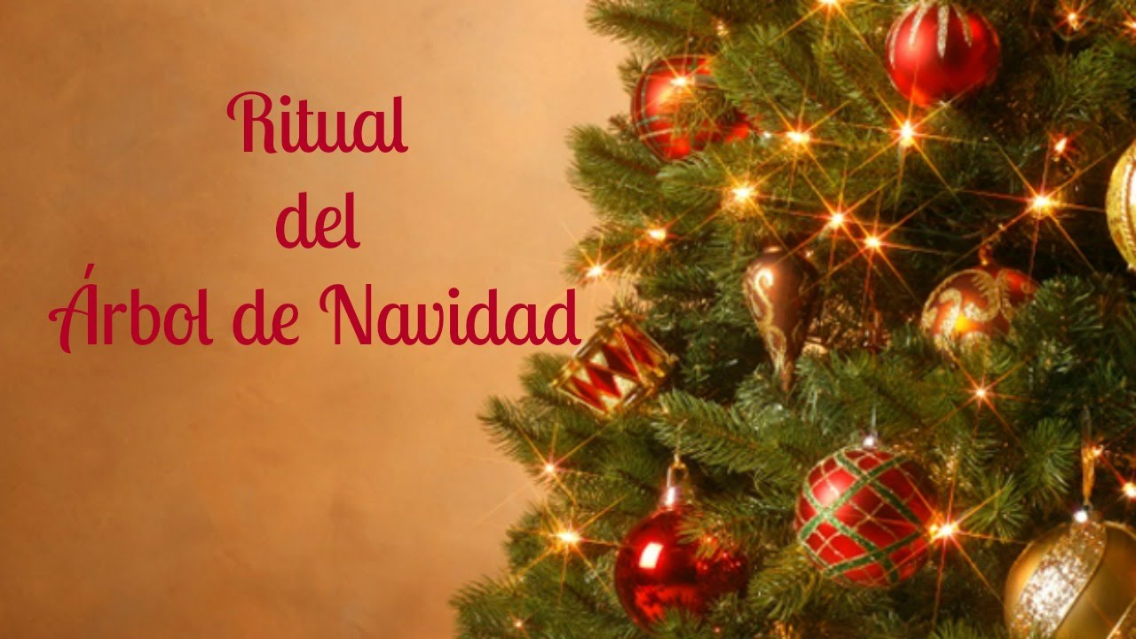 How to decorate the christmas tree to have luck in the new - Fotos de navidad de arboles ...