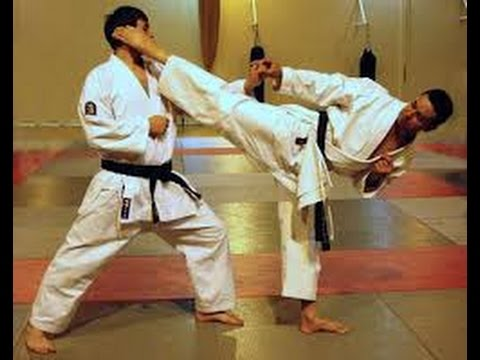 Stage karate avec experts japonais paris 03 01 15 youtube for Mobilier japonais paris 15