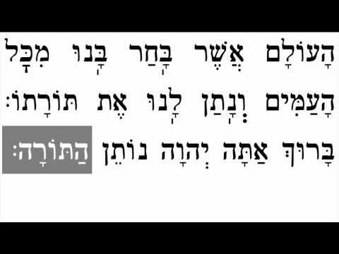 Torah Blessings  ברכות התורה