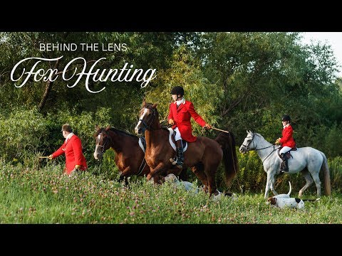 Behind The Lens - Fox Hunting