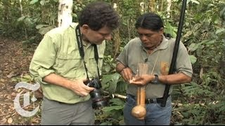 Kristof in the Crosshairs: A Blowgun Showdown in the Amazon | The New York Times