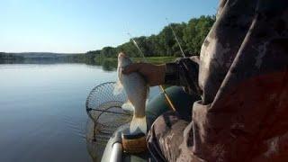 Рыбалка на кольцо Река Дон Отчет о рыбалке 19 июня