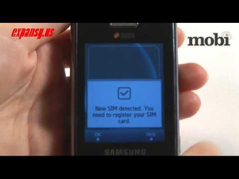 Samsung D890 Duos