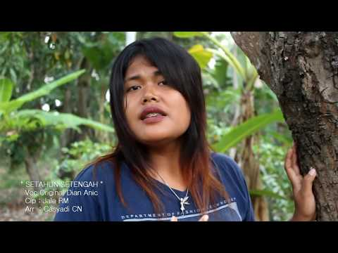 DERAMA LAGU SETAHUN SETENGAH Cover Dian Anic (Official Video HD)