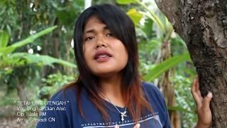 Download Lagu DERAMA LAGU SETAHUN SETENGAH  Cover Dian Anic (Official Video HD) mp3