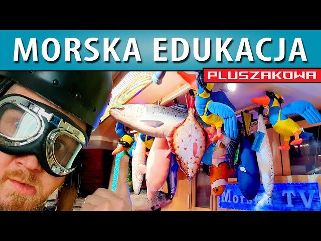 Morska Edukacja Pluszakowa - pierwsze maskotki...