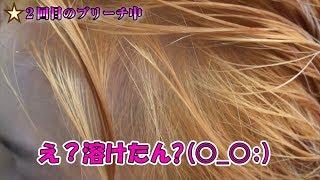 人生初!マニックパニックでピンク髪に挑戦!