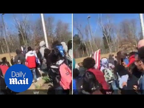 Students tear down American flag during gun control walkout - Daily Mail