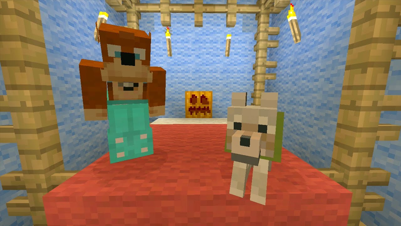 how to grow pumpkins in minecraft xbox 360