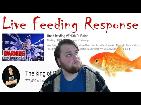 Live Feeding Opinion (Ft. King of DIY)