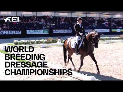 RE-LIVE | Dressage (6-yr-old horses) | Longines FEI/WBFSH World Breeding Dressage Championships