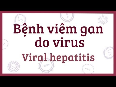 Bệnh viêm gan do virus (A, B, C, D, E) - nguyên nhân, triệu chứng, chẩn đoán, điều trị và bệnh lý