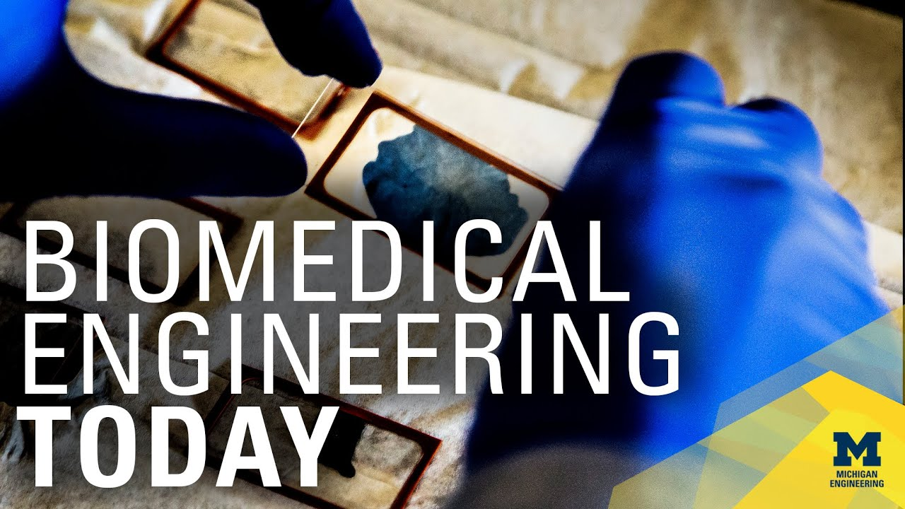 Fifty years of Biomedical Engineering and Collaboration