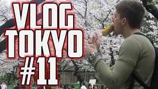 VLOG TOKYO 2016 - EP11 | ASAKUSA ET ZOO DE UENO
