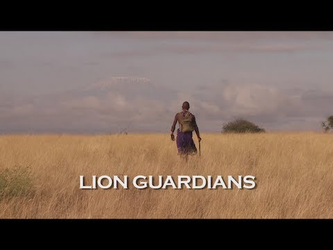 Lion Guardians - Coexistence between people and lions (Swahili w/subtitles)