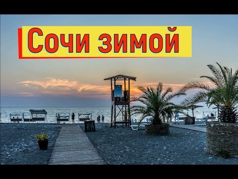 🔴🔴 Отдых в Сочи зимой. Море в Сочи зимой.Туристы на пляже загорают. Котики.Рыбаки на море.Сочи.