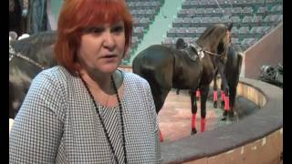 В Курском цирке прошла открытая репетиция