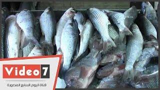 """ركود فى سوق الأسماك رغم ثبات الأسعار .. وتاجر:""""رمضان موسم لحوم"""""""