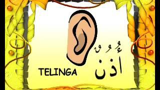 Belajar sambil bernyanyi :)