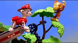 Paw Patrol Saves the Scooter and Monkey with Chase and Marshall