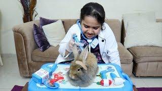 الدكتورة شفا تعالج الأرنب المريض !!