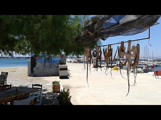 Unforgettable excursion by boat to Kaladakia beach, Ormos Marathokambos, Chrysi Ammos and Limnionas