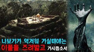 [병맛리뷰] 마야문명을 멸망시킨 본격 식물공포영화. 루인스!