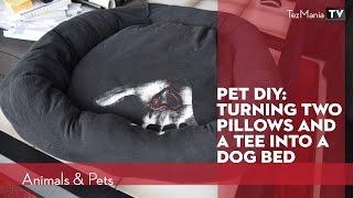 Pet DIY: 2 pillows + 1 tee = simple dog bed