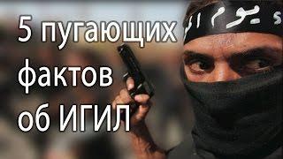 5 ПУГАЮЩИХ ФАКТОВ ОБ ИГИЛ - Исламское государство