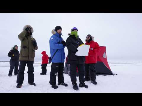 Using Drones for Polar Bear Research