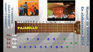 BB Bandola Llanera Pajarillo Anselmo LOPEZ Pedro Borrero